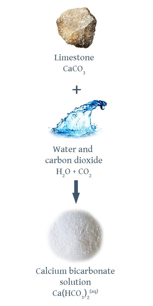 Reaction describing the formation of calcium bicarbonate.